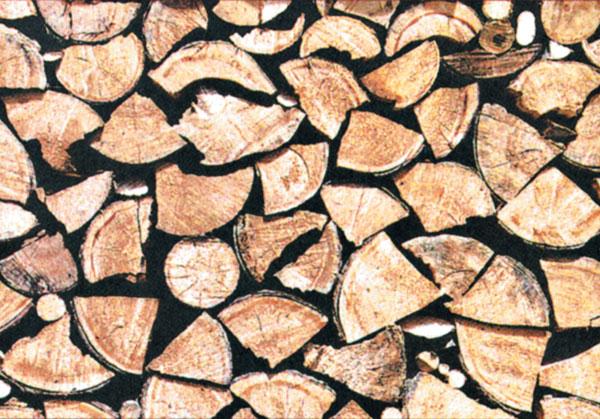 Využitie tepla z biomasy na Slovensku