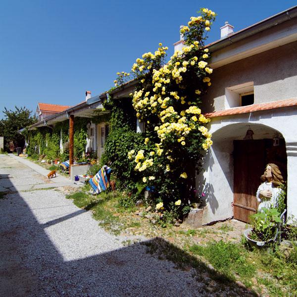 Vinársky dom s atmosférou zašlých čias