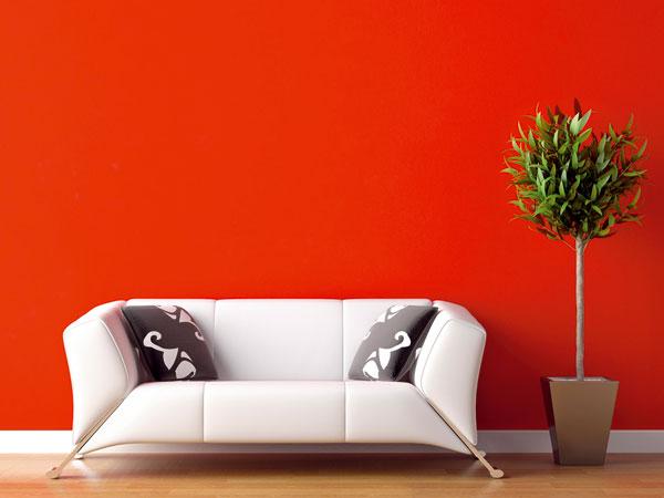 Výrazné farby anedokonalosť dokonalosťou