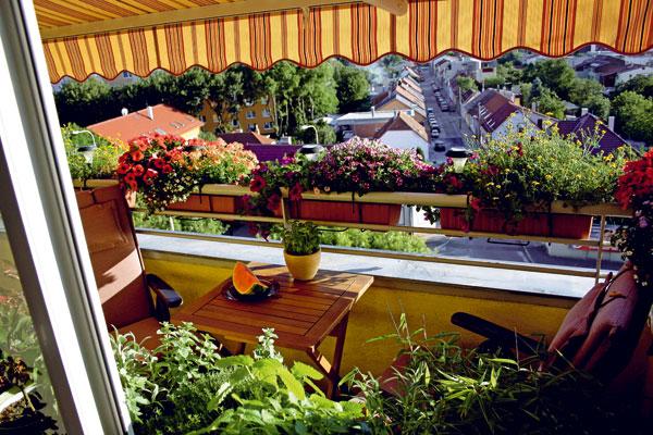 Výsledky súťaže - Pochváľte sa krásnym balkónom