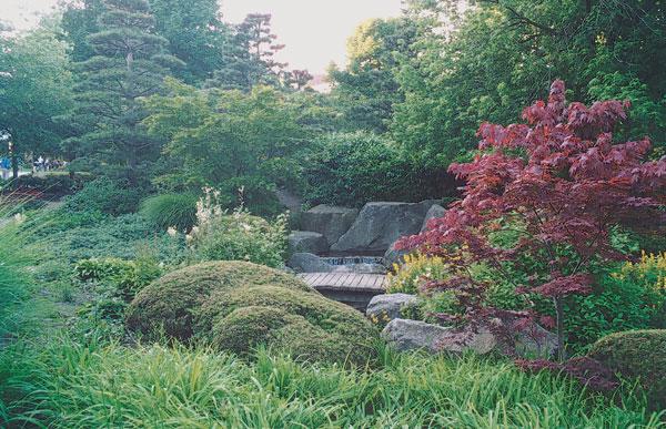 Keď do záhrady nechodí slnko