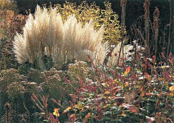 Október v záhrade 2