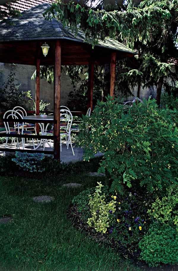 Záhrada ako v lese