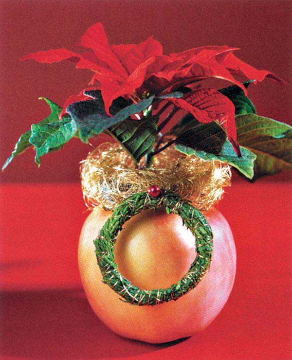 Jablko a vianočná hviezda