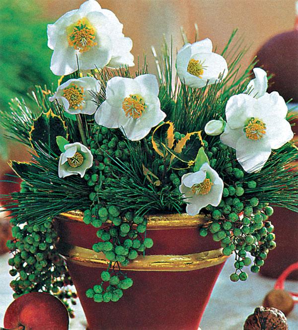 Vianoce s kvetmi