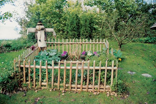 Marec v záhrade