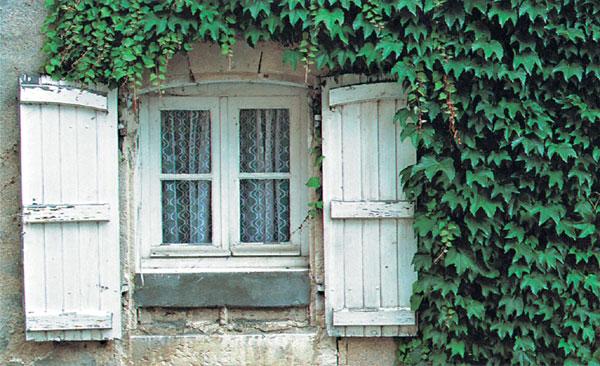 Tieň v dome (alebo dom v tieni)