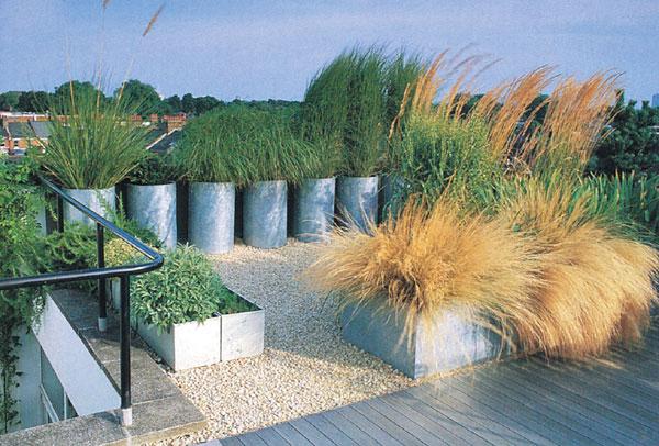 Zelené oázy na strechách