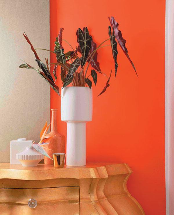 Oranžová a exotické kvetiny
