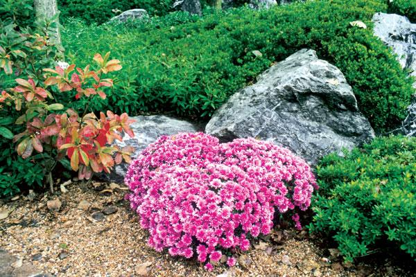 Záhrada v štýle feng-šuej alebo Čína na Slovensku