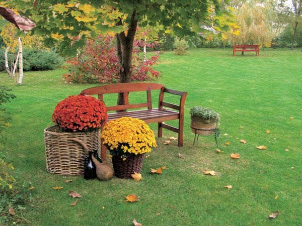 Moja záhrada, môj park