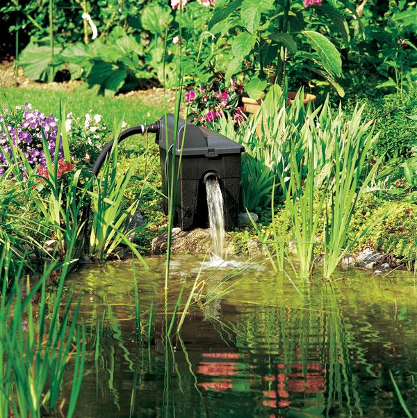 Vodné zrkadlenie: alebo čo nevidel bájny Narcis