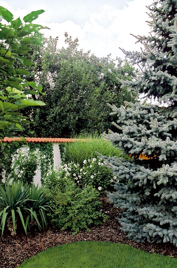 Záhrada v znamení geometrie