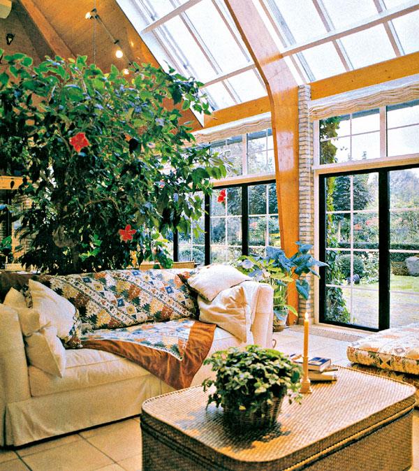 Záhrada za sklom alebo trópy trochu inak