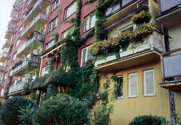 Kvetinová záhrada na balkóne: (1. časť)