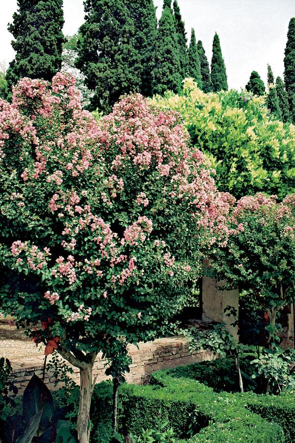 Viac než kvitnúci pozemský raj
