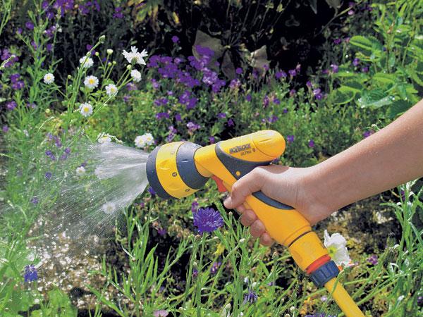 Smäd záhrade nepristane