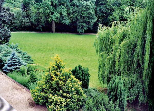 Zelená je tráva, údržba je hra
