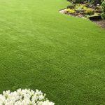 trávnik v záhrade