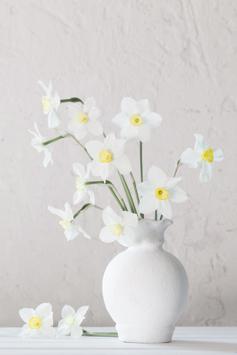 biela váza s jarnými kvietkami