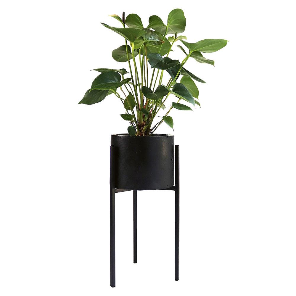 Čierny betónový kvetináč so stojanom od značky Cothi, 25 €, sashe.sk