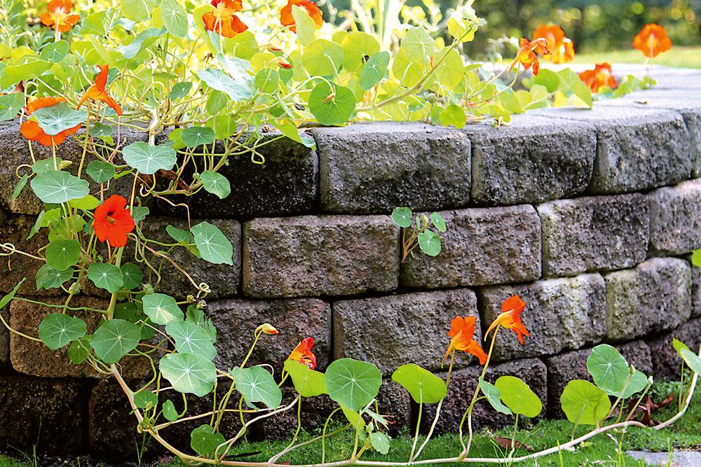 Betónové tvárnice v záhrade so vzhľadom kameňa