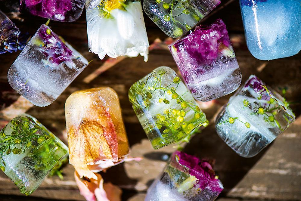 kocky ľadu s jedlými kvetmi