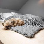 vyvýšená dvojlôžková posteľ