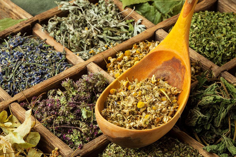 Rôzne druhy byliniek