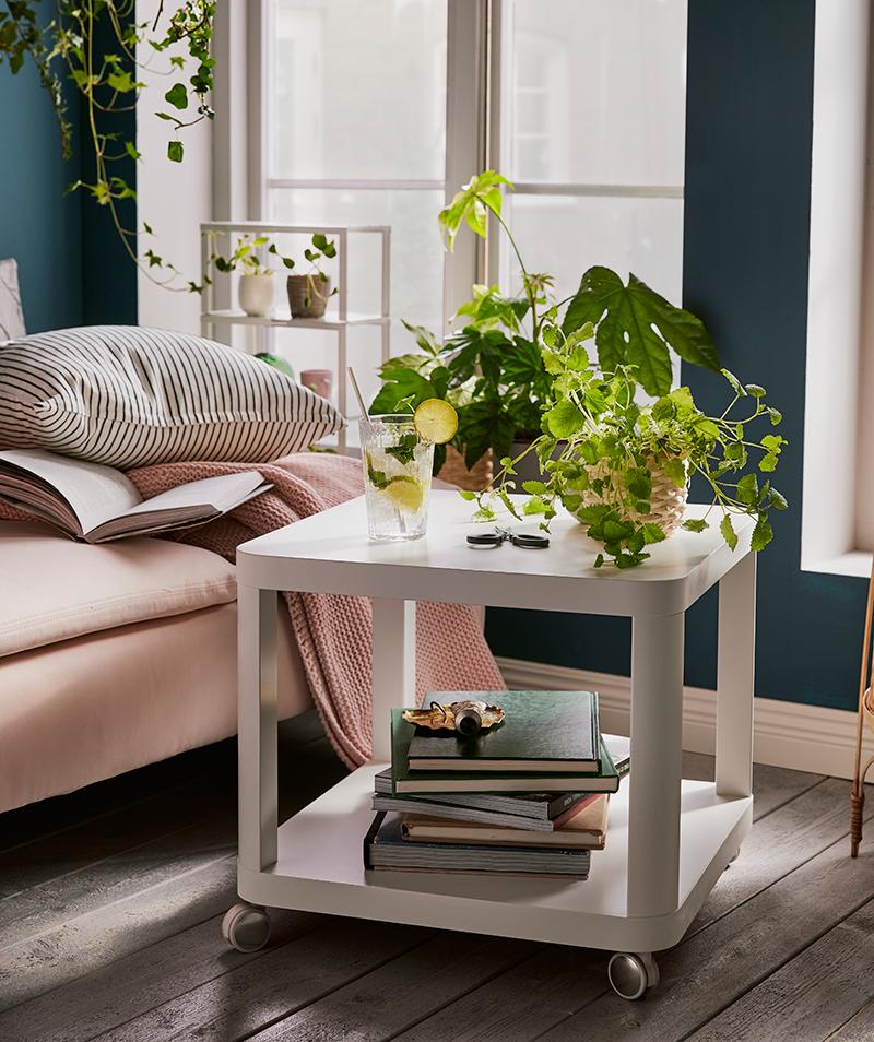 Stolík na kolieskach s rastlinami