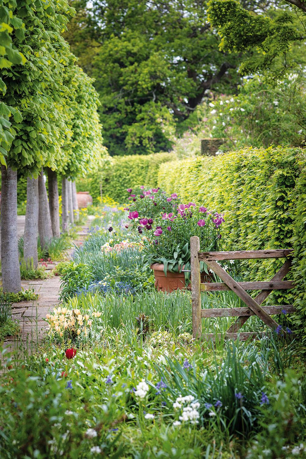 anglická záhrada