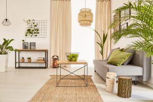 Najhoršie a najlepšie interiérové rastliny podľa Feng Shui. Máte ich doma aj vy?