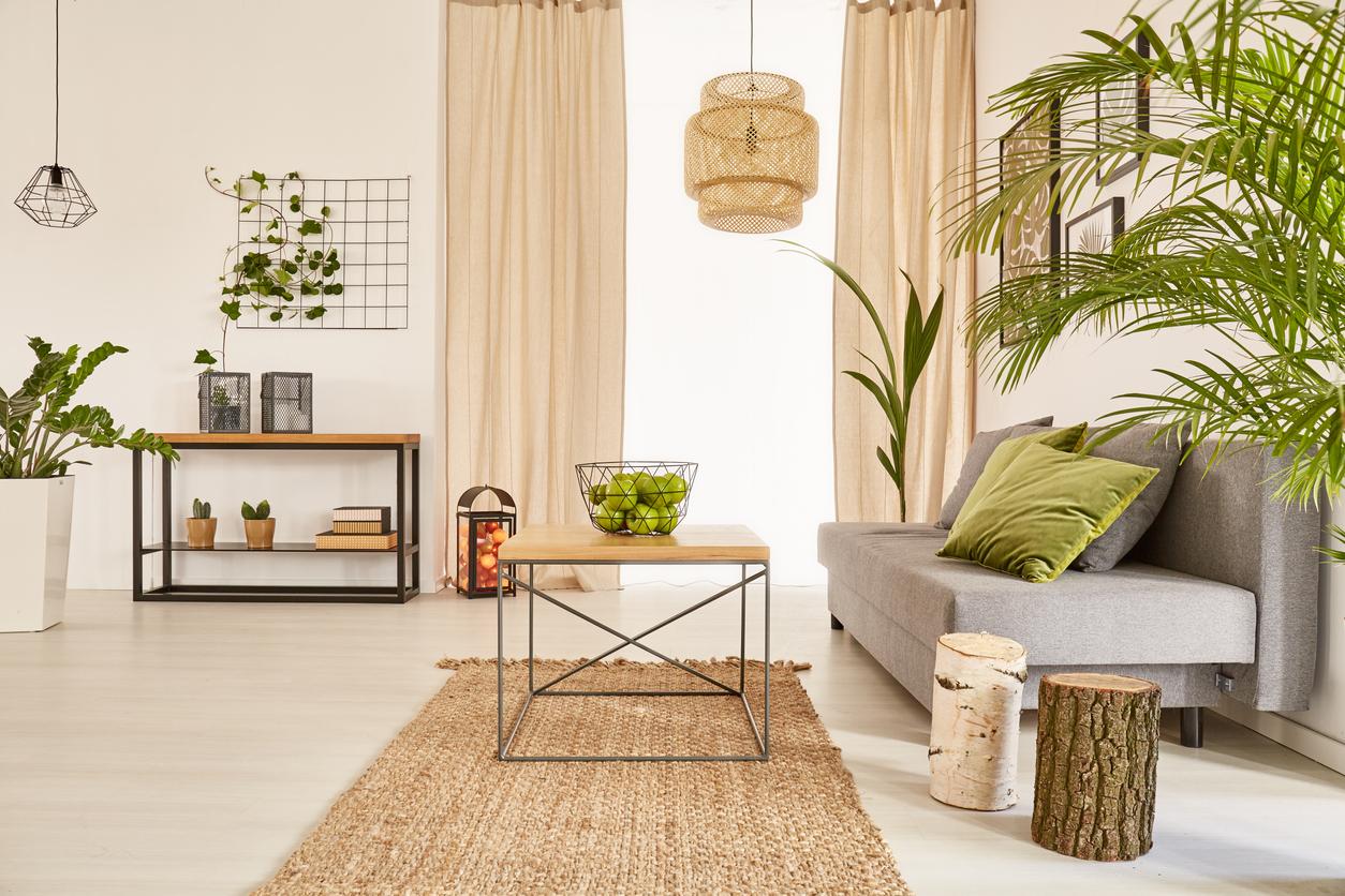 rastliny v interiéri podľa Feng Shui