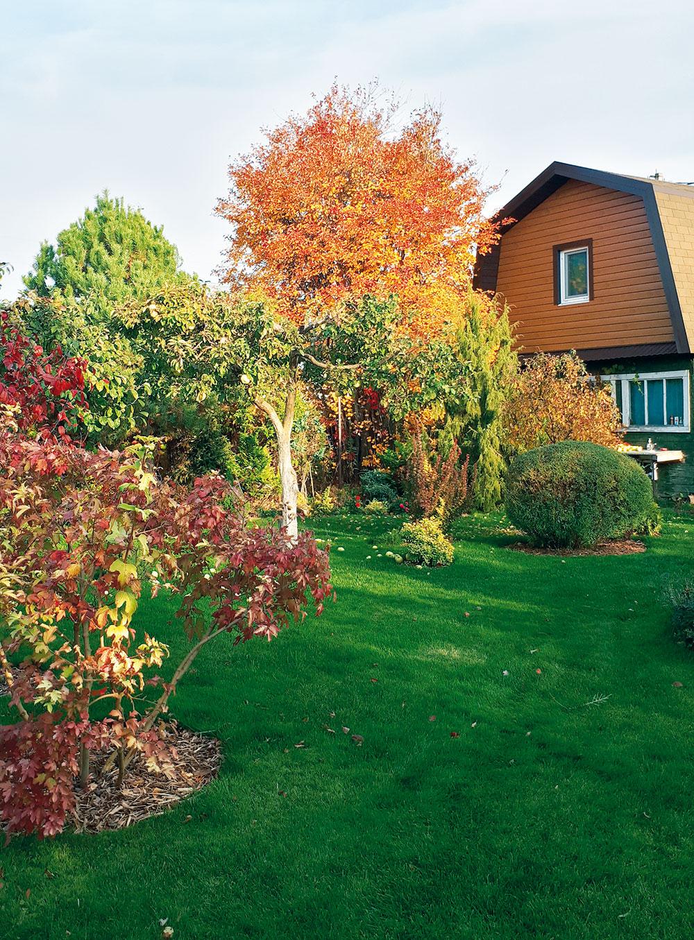 záhrada na jeseň