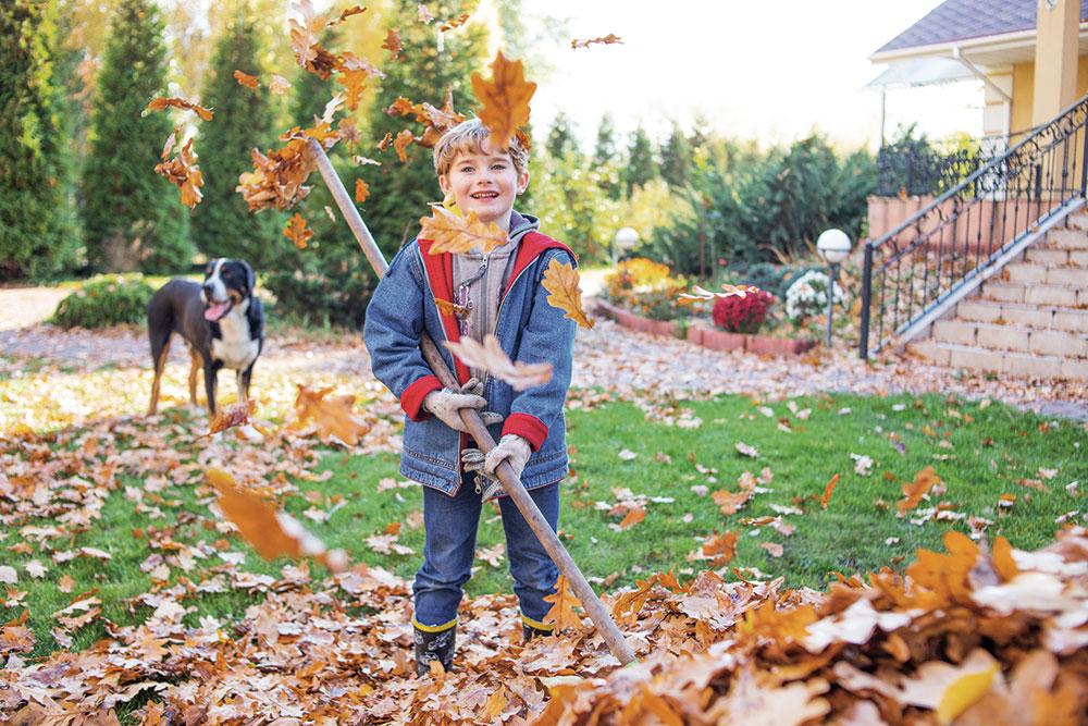 hrabanie lístia na jeseň