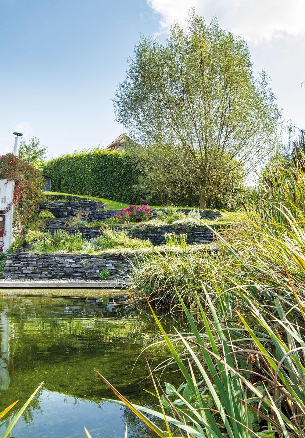 prírodnú záhradu s jazierkom