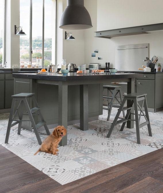 -Kitchen-dog-scr