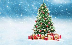 Vianočná súťaž: Vyhrajte vianočný stromček alebo darčeky