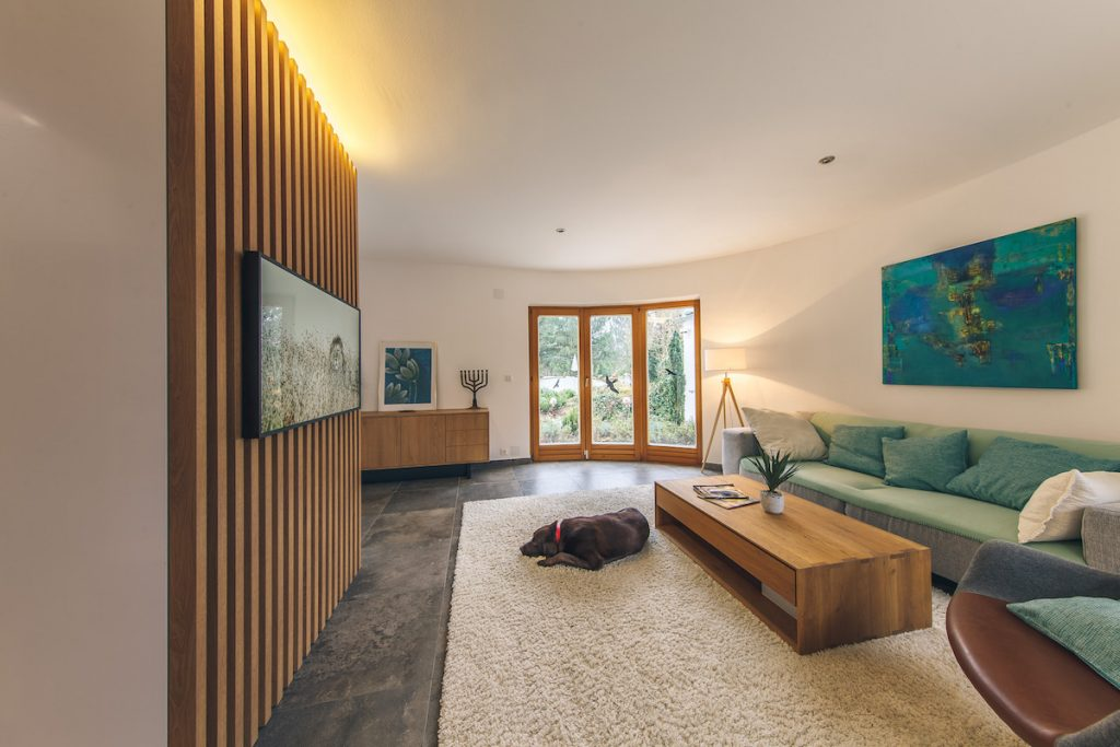 Obývačka s gaučom a psom