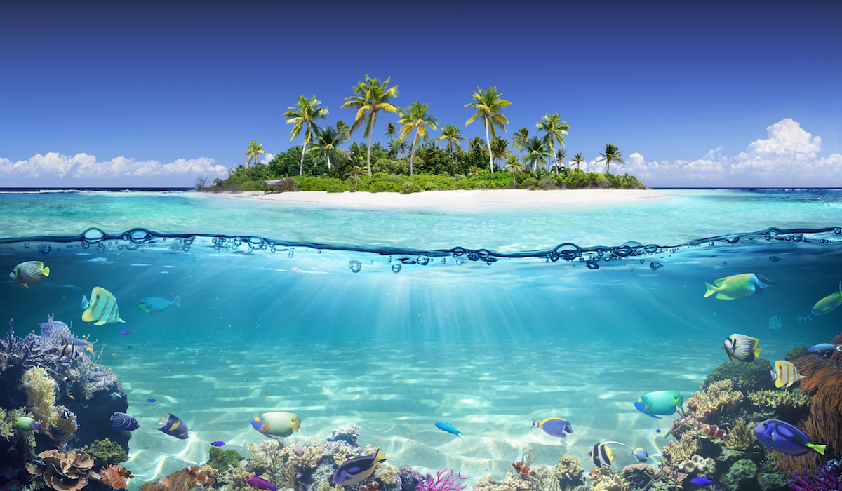 Tropical Island And Coral Reef – Split View With Waterline