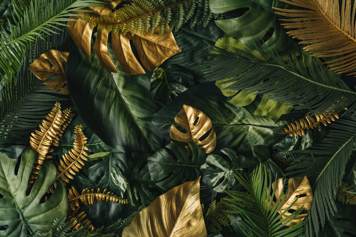 Creative nature background. Gold and green tropical palm leaves.