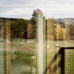 Výhľad z chatky
