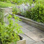 Záhrada plná byliniek a rastlín