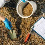 Testovanie pôdy