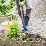 Žena pracujúca v záhrade