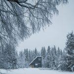 Víkendový dom v zasneženom lese