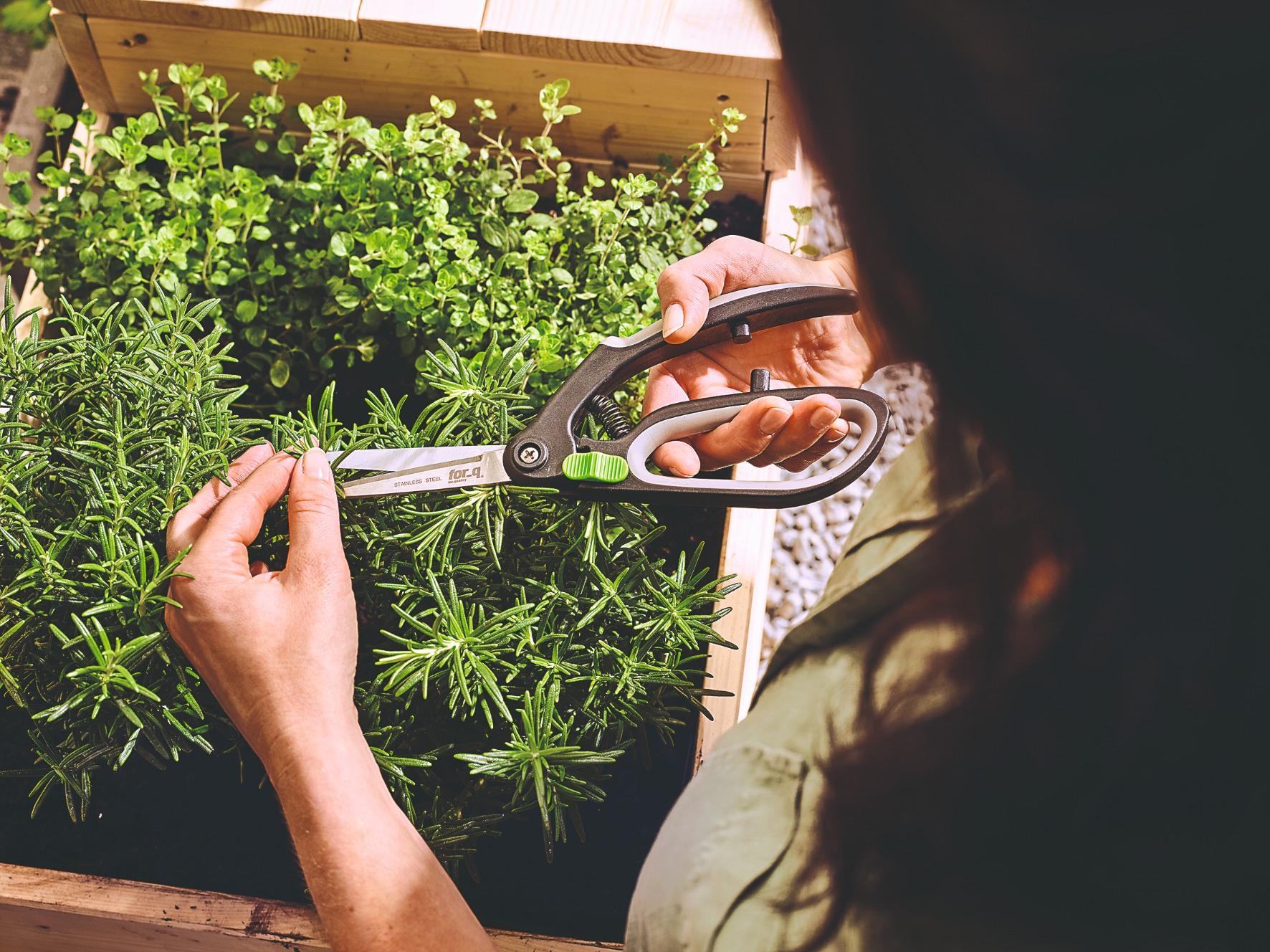 strihanie byliniek