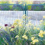 Pôvodný plot v záharde