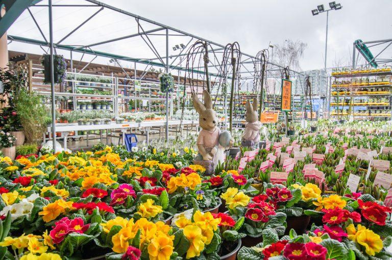 Sezóna v záhradách je v plnom prúde. Záhradné centrá Hornbach sú otvorené