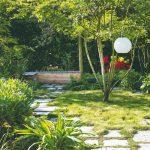 Viackmenná drevina v záhrade